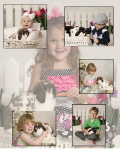 Live Bunny Portraits At Henderson Photography